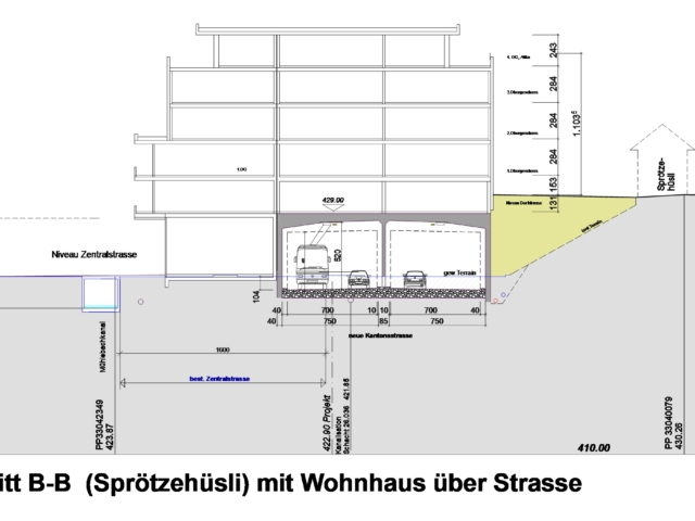 Ebikon Strassenquerschnitt (Sproetzehuesli)